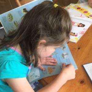 Sticker Book using